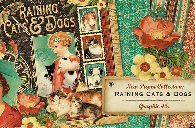 Raining Cats & Dogs collection