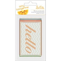 American Crafts - Amy Tangerine - Vellum Envelopes