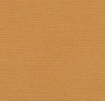 Bazzill Cardstock (canvas)-Lima