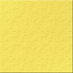 Bazzill Cardstock (orange peel)-Lemon Tart
