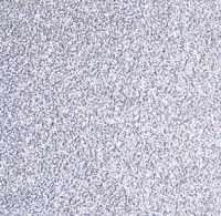 Best Creation Solid Glitter Cardstock - Silver