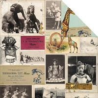 Bo Bunny - Carnival Collection - Big Top Paper