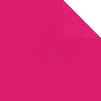 Bo Bunny - Double Dot Cardstock - Hot Pink