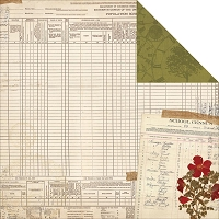 Bo Bunny - Heritage Collection - Census Paper