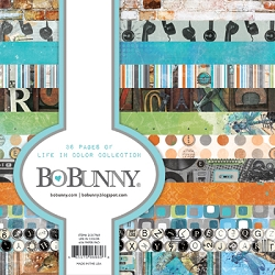 Bo Bunny - Life In Color Collection - 6x6 Paper Pad