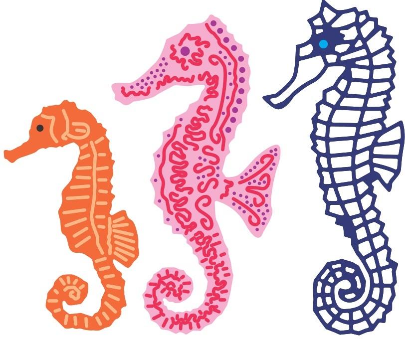 seahorse essays