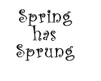 Frantic Stamper Cling-Mounted Rubber Stamp - Spring has Sprung