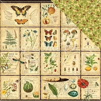 Graphic 45 - Nature Sketchbook Collection - 12
