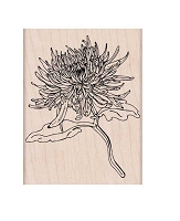 Hero Arts - Wood Mounted Rubber Stamp - Mum Flower