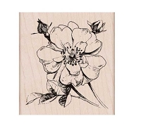 Hero Arts - Wood Mounted Rubber Stamp - Antique Rose Stem