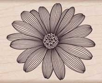 Hero Arts - Wood Mounted Rubber Stamp - Etched Daisy