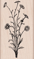 Hero Arts - Wood Mounted Rubber Stamp - Flower Spray