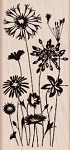 Hero Arts-Wood Mounted Rubber Stamp-Wild Flowers