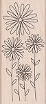 Hero Arts - Wood Mounted Rubber Stamp - Daisies