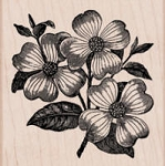 Hero Arts-Wood Mounted Rubber Stamp-Dogwood