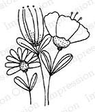 Impression Obsession - Cling Mounted Rubber Stamp - By Lindsay Ostrom - Sierra Wildflower