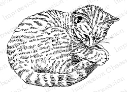 Impression Obsession - Cling Mounted Rubber Stamp - By Gail Green - Curled Cat