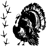 Inkadinkado Clear Stamps - Turkey