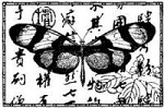 Magenta-Cling Stamp-Asian Butterfly