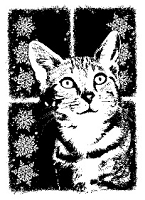 Magenta - Cling Rubber Stamp - Cat of the Season - Winter 2011 Pearl Small