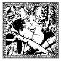 Magenta - Cling Rubber Stamp - Cat of the Season - Spring 2012 Gustave Small
