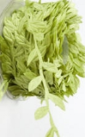 May Arts Ribbon- Leaves Trim: Lime (price per yard)