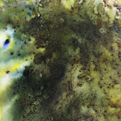 Paper Artsy - Infusions Dye Stains - Olive Tree