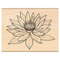 Penny Black Wood Stamp - Water Lily