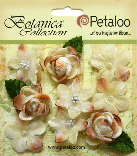 Petaloo - new velvet flowers and petite daisies