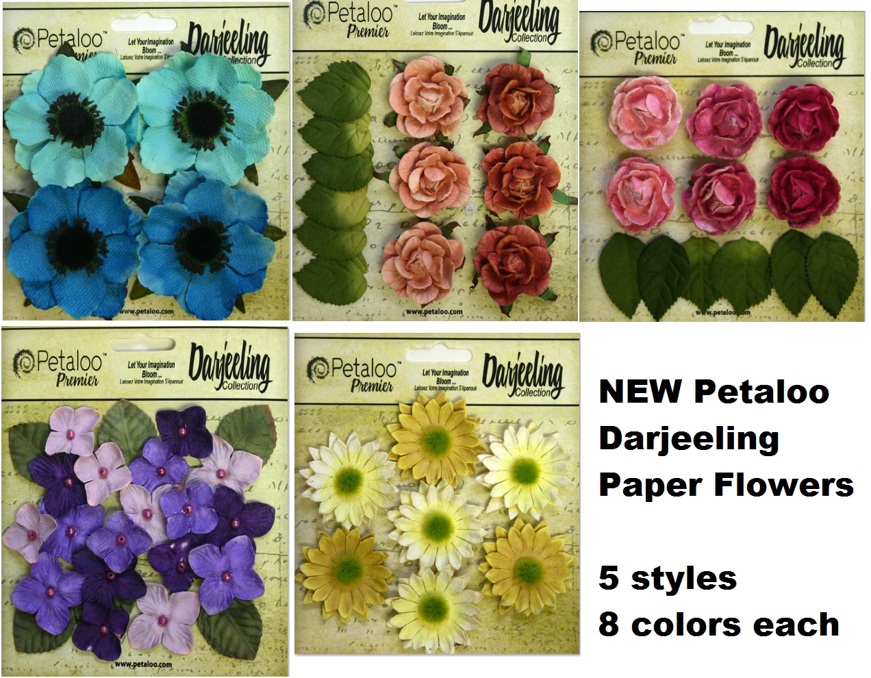 Petaloo - New Darjeling Anemones, roses, hydrangeas, and daisies