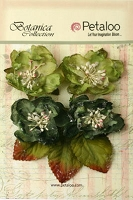 Petaloo - Botanica Collection - Sugared Blooms - Pine Green