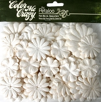 Petaloo - New Color Me Crazy flowers