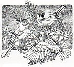 Rubber Stamp Avenue-Cling Stamp-Winter Birds