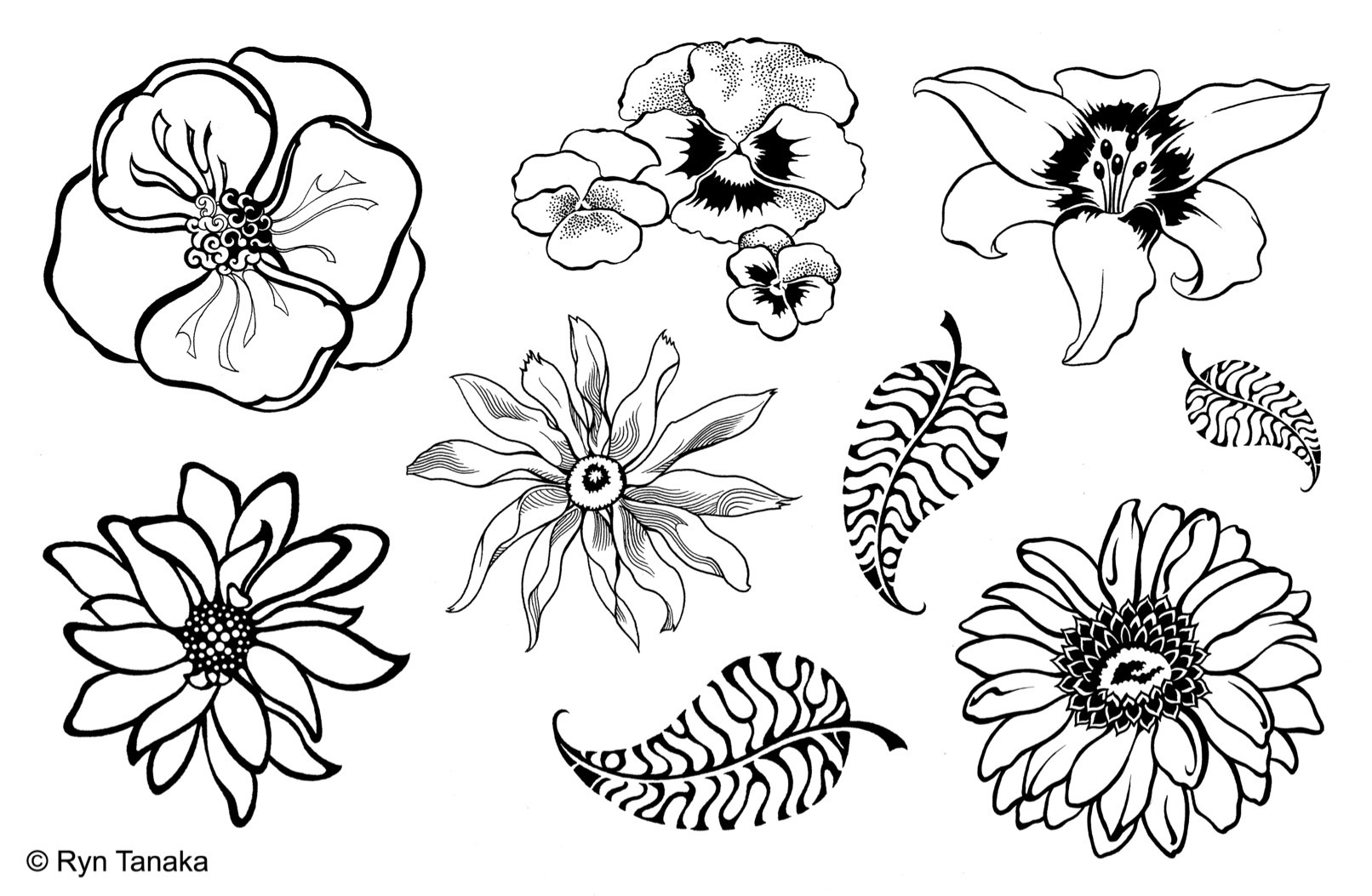 Designs By Ryn Unmounted Rubber Stamp Sheet Flowers 5