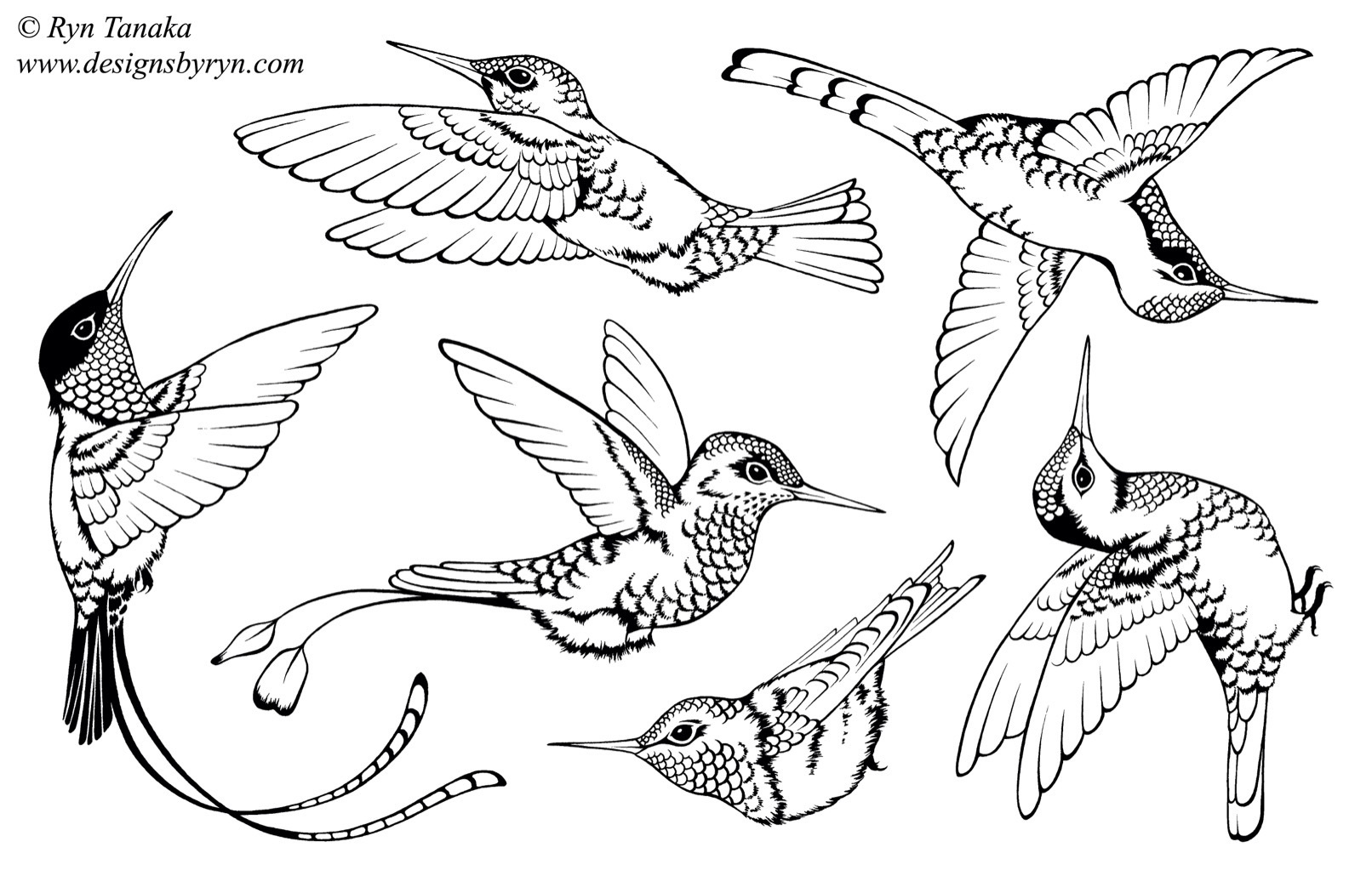 Designs By Ryn Unmounted Rubber Stamp Sheet
