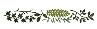 Sizzix Sizzlits Decorative Strip Die by Tim Holtz -Spring Greenery