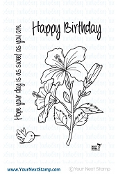 Your Next Stamp - Clear Stamp - Sweet Humming Bird