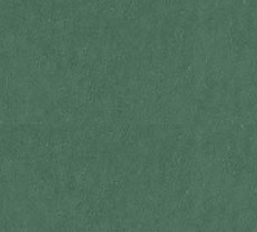 "American Crafts - 12"" x 12"" Smooth Cardstock - Pine"