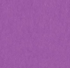"American Crafts - 12"" x 12"" Smooth Cardstock - Grape"