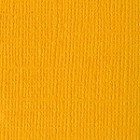 Bazzill Cardstock (monochromatic)-Beeswax