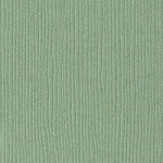 "Bazzill 12"" x 12"" Cardstock-(Grass Cloth)-River Reed"