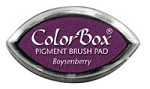 Colorbox Cat's Eye - Boysenberry