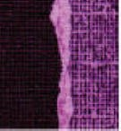 Core' Dinations Basics Cardstock - Purple Grandeur