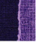 Core' Dinations Basics Cardstock - Purple Majesty