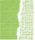 Core' Dinations Basics Cardstock - Rosemary