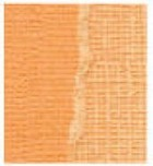 Core' Dinations Basics Cardstock - Salmon