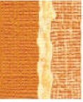 Core' Dinations Basics Cardstock - Sandstone