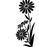 "Darice Embossing Folder - Size 4.25"" x 5.75"" - Large Daisy"