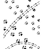 "Darice Embossing Folder - Size 4.25"" x 5.75"" - Animal Tracks"