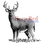 Deep Red Stamps - Cling Stamp - Buck Deer